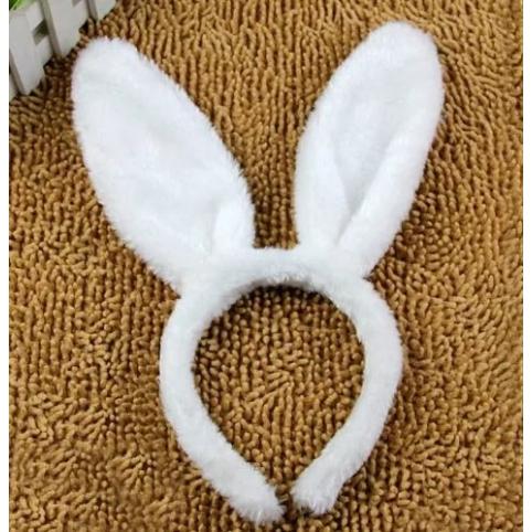 Ушки зайчика белые